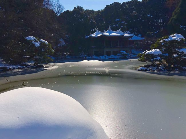 Winter on Tokyo Tadaa Community Tadaa Traveling Travel Ice Shinjuku Gyoen Shinjuku Gyoen National Garden Tokyo Snow No People Architecture Water Nature Outdoors Day Shades Of Winter