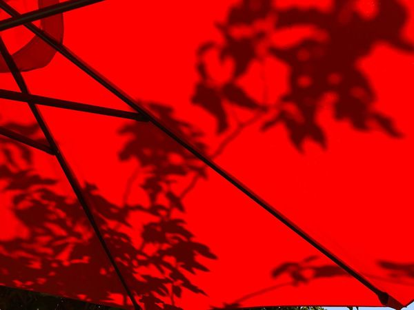 Shadows of leaves can be seen through a umbrella on a very sunny day in El Centro, CA. Close-up Red Low Angle View No People Day Umbrella leaves First Eyeem Photo