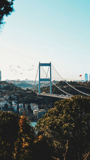 Suspension bridge in city against clear sky