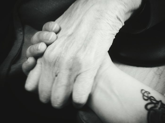 Cropped Image Of Women Holding Hands