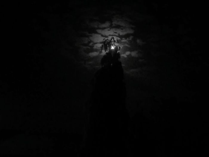 Spooky Silhouette Night Evil Horror Shadow Lightning Thunderstorm Power In Nature No People Outdoors Halloween Sky