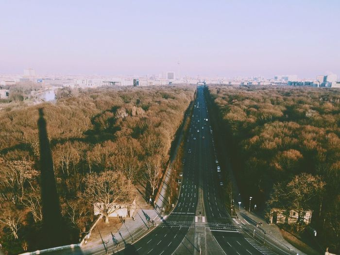 High Angle View Of Highway Between Forest