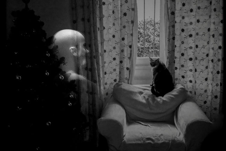 Double Exposure Of Woman By Curtain And Cat Sitting On Armchair At Home