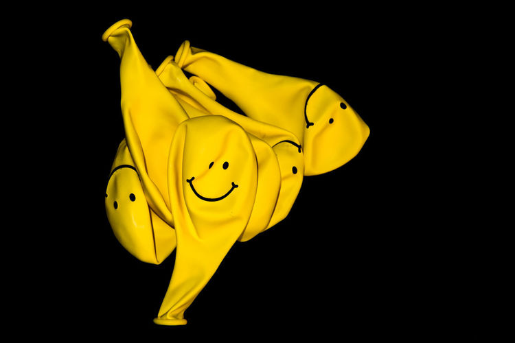 deflated yellow balloons Deflated Yellow Balloons Balloons Yellow Studio Shot Black Background Indoors  No People Close-up Representation Animal Representation Copy Space Animal Cut Out Still Life Animal Themes Animal Wildlife Beauty In Nature Creativity Vertebrate Nature Toy