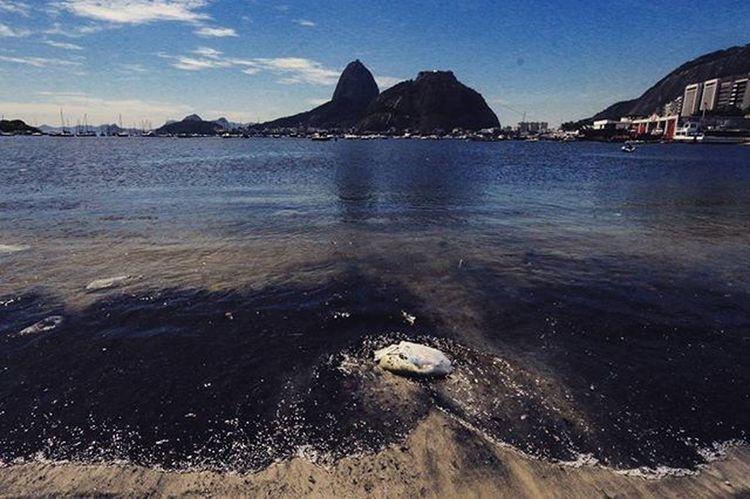 Dirty water and garbage, are part of the landscape of the Rio de Janeiro. Rio2016 . Foto: Ale Silva © @alesilva_rj_br Photooftheday Photo Art Everydayusa Streetphotography UrbanART Composition Everydaybrasil Capture Instalike Moment Everydaylatinoameria Instacool Love Canon Instago Rioeuamoeucuido Rio450 Rio2016