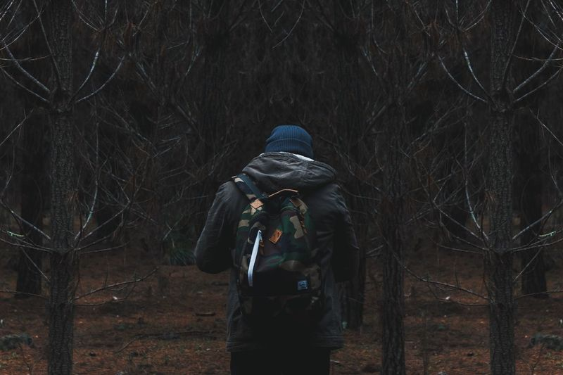 Hiker Looking At Forest