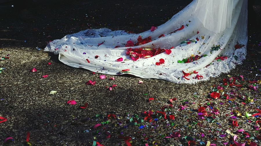 Rose Petals And Confetti On Wedding Dress On Bride At Field