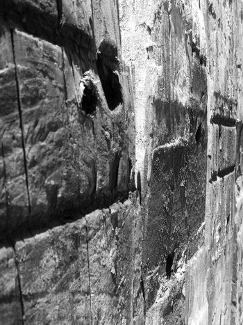 Backgrounds Bark Beauty In Nature Black And White Close-up Day Detail Full Frame Growth Hard Natural Pattern Nature No People Outdoors Railway Sleepers Rock Formation Rough Scenics Textured  Timber Tranquil Scene Tranquility Tree Trunk Wood