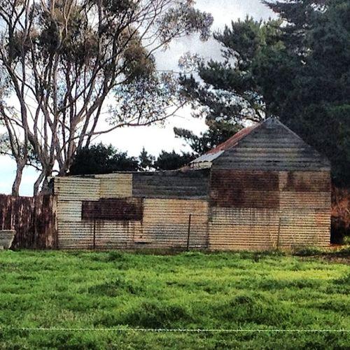 #rustylove #shedsniper #corregatediron #rusty #bellarine_peninsula Rusty Rustylove Corregatediron Shedsniper Bellarine_peninsula