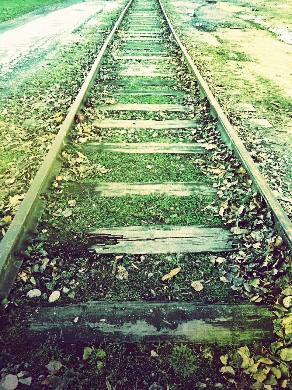 railroad track, rail transportation, day, railroad tie, nature, outdoors, no people, transportation, tranquility, straight, beauty in nature, grass