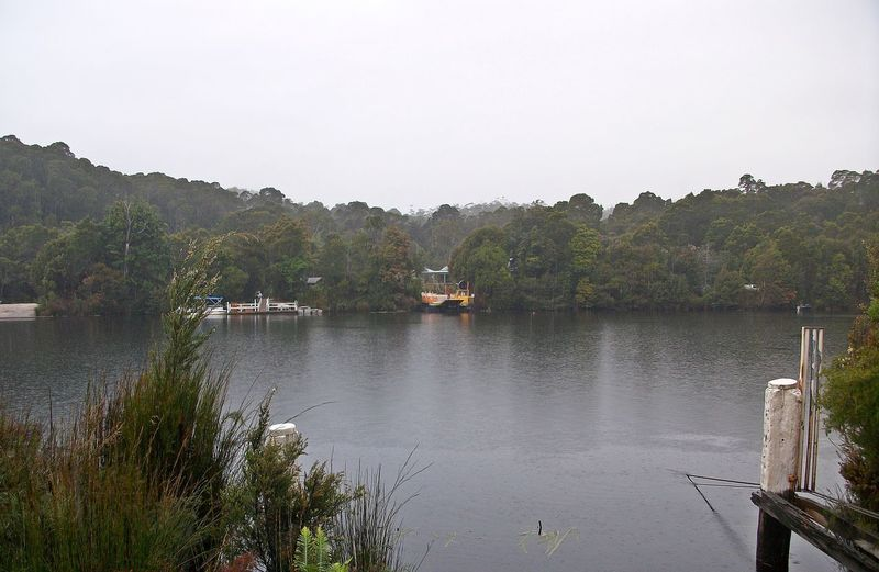 Pieman River State Reserve Animal Themes Beauty In Nature Clear Sky Day Lake Mountain Nature Nautical Vessel No People Outdoors Scenics Sky Tranquil Scene Tranquility Tree Water