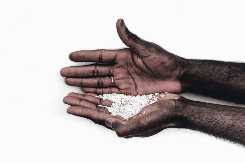 High angle view of person hand against white background