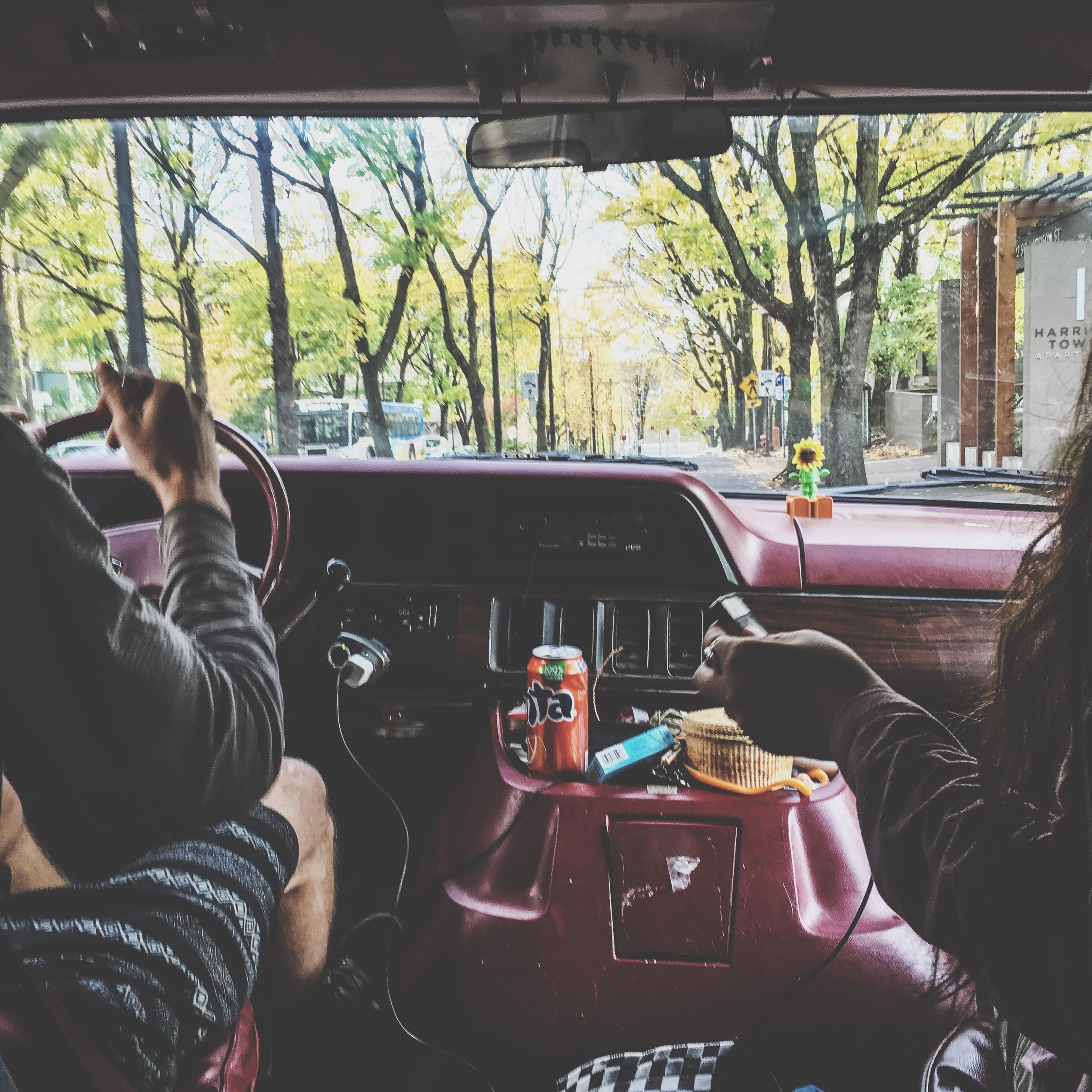 transportation, mode of transport, land vehicle, lifestyles, car, leisure activity, men, vehicle interior, travel, sitting, tree, holding, part of, car interior, driving, person