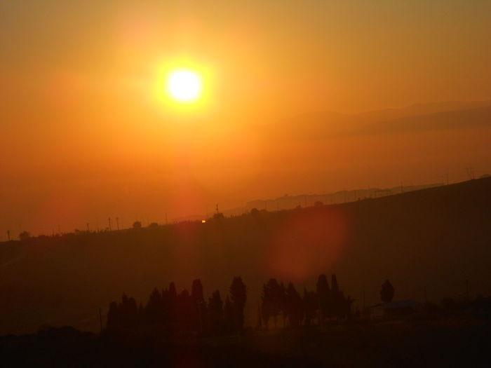 #Bright #Shadow #Sunrise #sunset #sun #clouds #skylovers #sky #nature #beautifulinnature #naturalbeauty #photography #landscape #TURKEY/Kocaeli Tree