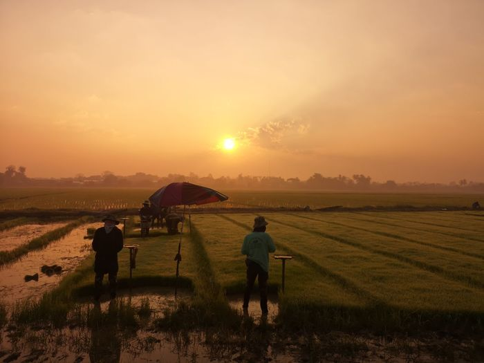 People on agricultural field against sky during sunset