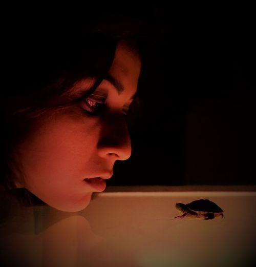 Close-up of woman looking at turtle on table against black background