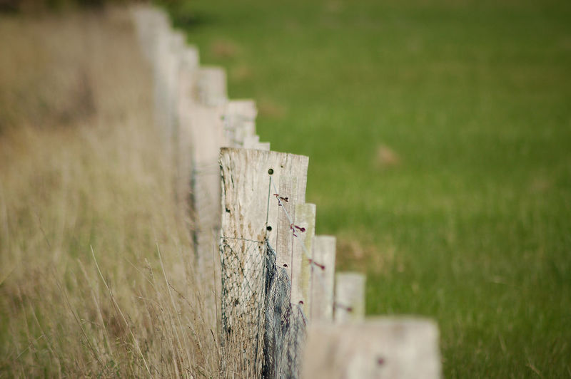 Close-Up Of Wooden Fence On Grassy Field