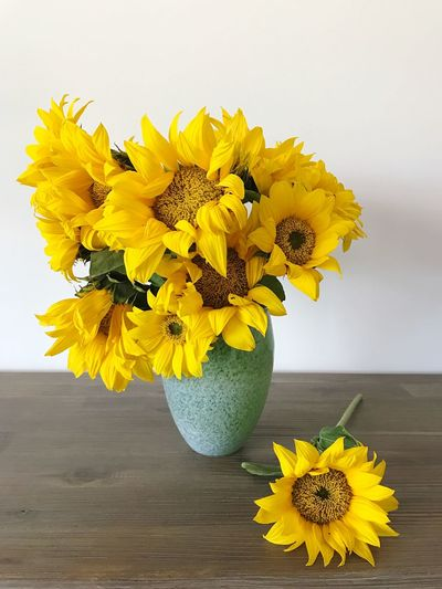Sunflower Decoration Valentine's Day  Yellow Flower Yellow Flower Indoor Design Interior Design Design Indoors  Wood Table Wood - Material Spray Bunch Flower Petal Fragility Sunflower Flower Head Vase Freshness Beauty In Nature Nature Flower Arrangement Blossom Growth Plant Leaf Close-up Springtime Bouquet