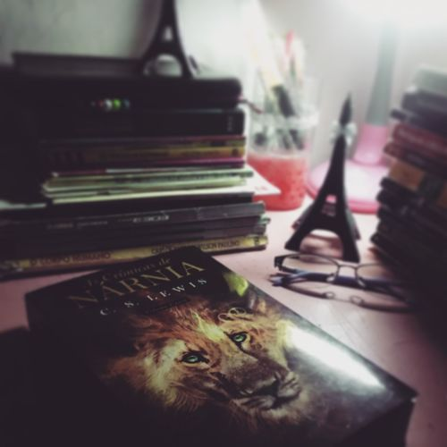 Books Lion Ascronicasdenarnia