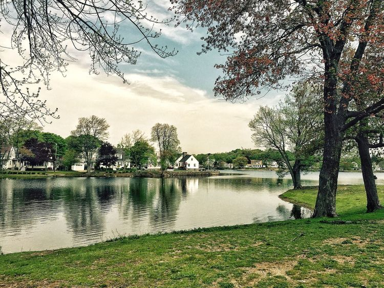 LYNN Pond Water Landscape Beautiful Scenery Relaxing Sky Trees Nature
