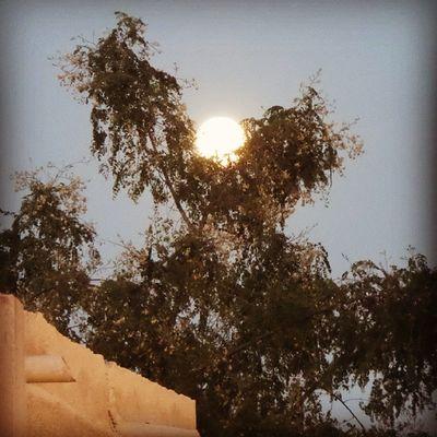 مساكم ربي بالخير ... full moon ...
