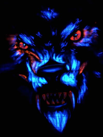 Wall Art Schwarzlicht  Tiger Human Body Part Body Part Blue Human Face Black Background Indoors  Multi Colored Spooky Dark Portrait Horror Paint Fear