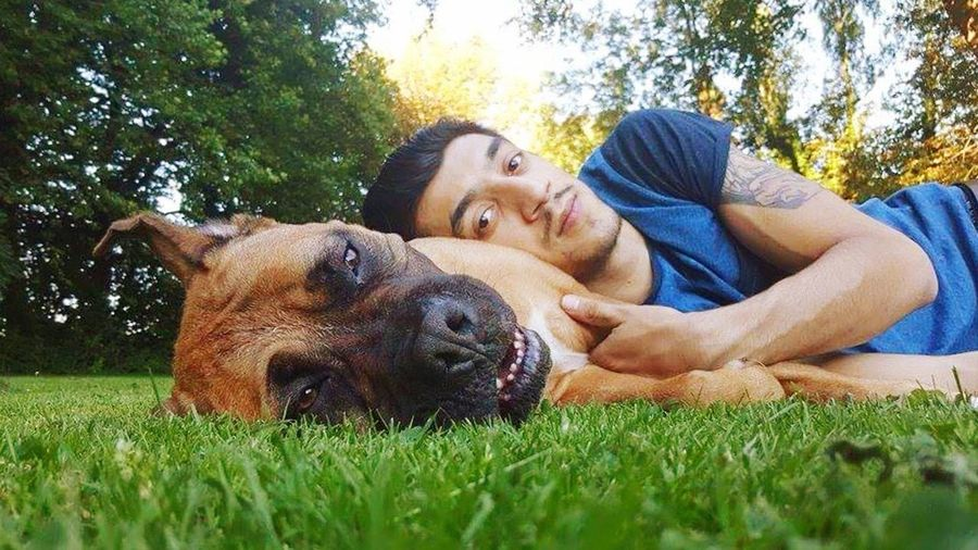 Myhusband Dog Domestic Animals Animal Themes Pets Grass One Animal Mammal Relaxation Tree Loyalty Relaxing Togetherness Bonding Field Lying Down Resting Close-up Full Length Green Color Pampered Pets