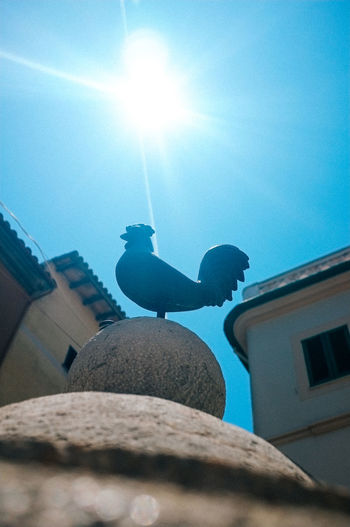 low angle up to sunny blue sky of cockerel statue amidst buildings. Architecture Blue Bright Building Exterior Built Structure Chicken Close-up Cloud Cockerel Day Lens Flare Low Angle View Nature No People Outdoors Rooster Sculpture Sky Sun Sunbeam Sunlight Sunny