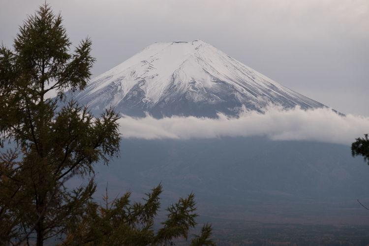 peak of fuji