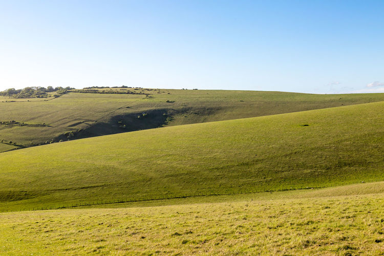 Sussex Landscape Beauty In Nature Clear Sky Countryside Day Field Grass Green Color Hill Landscape Lewes Mount Caburn Nature No People Outdoors Rolling Hills Scenics Sky South Downs Sussex