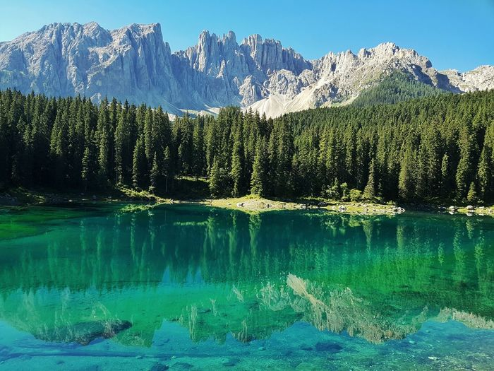 Reflection of trees and mountains in lake during sunny day