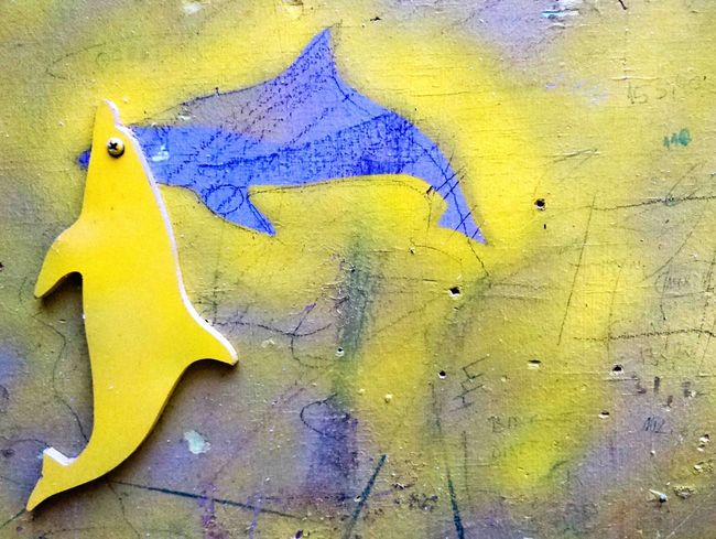 A Soul of the Dolphin Dolphin Dolphin Fun Dolphinsoul Yellow Toy No People Yellowandblue Woodentoy Woodendolphin Animal Themes Multi Colored Modern Art Modernart Contemporary Contemporary Art EyeEmNewHere The Week On EyeEm Gotzphoto Paint The Town Yellow