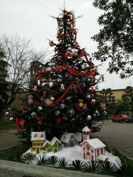 Best Christmas Lights Romagna Albero Di Natale