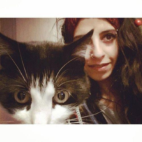 Kido Cat Kedi Love gözümü Kido bürüdü!