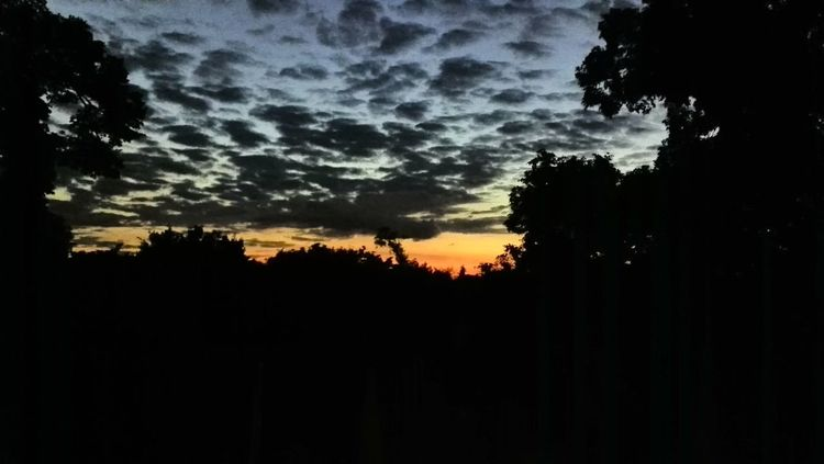 Sundown Nofilter