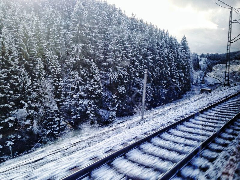 Winter Forest Train Journey Cold Days