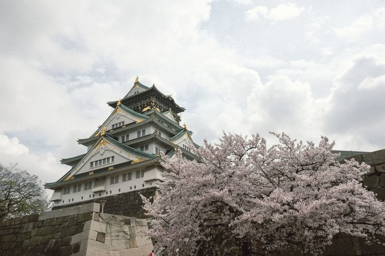 Outside view of Osaka castle Building Exterior OSAKA Japan Castle Sakura Blooming Tree Sky Architecture Building Exterior Built Structure Historic Building Blooming Palace