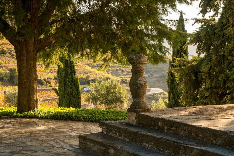 Douro  Porto Portugal Travel Destinations