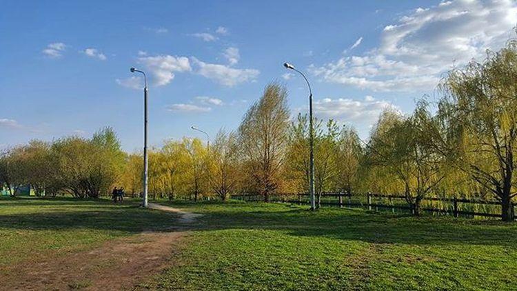 Москва город столица день Природа фото Moscow Russia Rus Cool City Best  God Good Photo Photography