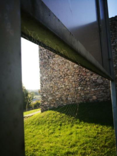 Spidersweb Castle