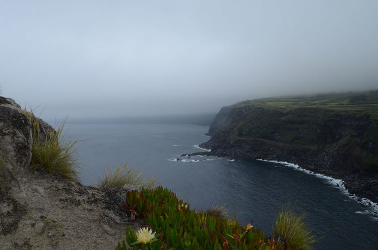 View from the Morro - West of Horta Azores Açores Beauty In Nature Cliff Coastline Faial Faial Island Morro Rock Formation Finding New Frontiers