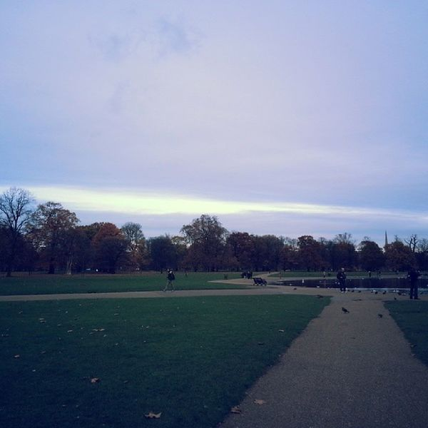 Such a beautiful view in Hyde Park Nofilter