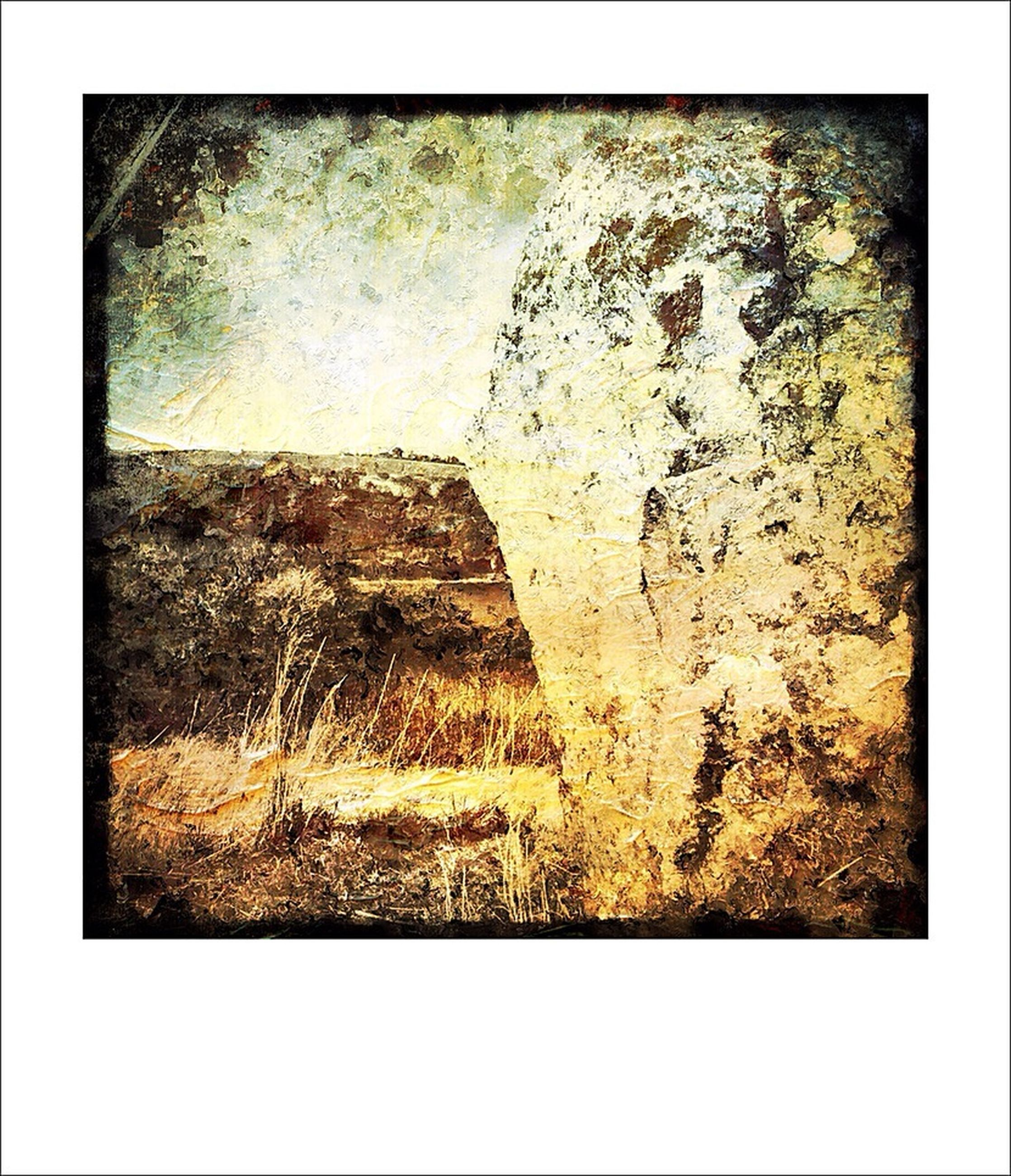 textured, transfer print, auto post production filter, weathered, old, rough, damaged, wall - building feature, close-up, run-down, deterioration, abandoned, wall, full frame, backgrounds, no people, obsolete, day, outdoors, cracked