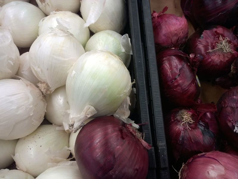 Red and White onions. Produce Aisle Produce Groceries Shopping Seperation Together Different Layers Group Of Objects Raw Onion Skin Multiple Many Onion Red Onions Purple Onion White Onions No People Vegetables Food Supermarket Vegetable Close-up Food And Drink Raw Food Root Vegetable Farmer Market Aisle