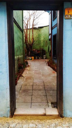 Odunpazarıevleri EyeEm Best Shots Old City Door Garden Blue Green Colorful Door Architecture Doorway Broom Sliding Door Doormat Entry Sweeping Closed Door Open Door Entrance Welcome Sign Front Door Cleaning Equipment Residential Structure