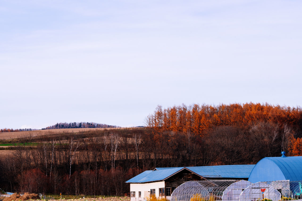 TREES AND HOUSES ON LANDSCAPE AGAINST SKY