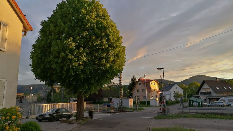 bello albero Blackforest Germany Sommergefühle Wolkenhimmel Sky Photography Sky Wolken Wolken Und Himmel Sonne EyeEm Selects The Great Outdoors - 2018 EyeEm Awards Clouds And Sky Himmel♥ Der Baum 🌳 Alberobello City Tree Cityscape Water Town Community Beach Sunset