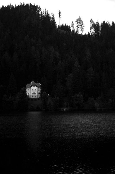 Austria Beauty In Nature Blackandwhite Day Erlaufsee Growth House Idyllic Lake Landscape Mood Nature No People Non Urban Scene Non-urban Scene Outdoors Pinetrees Rippled Scenics Sky Tranquil Scene Tranquility Tree Water Waterfront