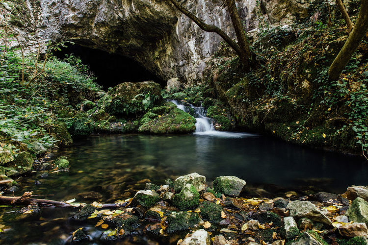 RIver near cave Freshness Beauty In Nature Cave Environment Flowing Flowing Water Forest Long Exposure Nature Outdoors River Rock Rock - Object Scenics - Nature Stream - Flowing Water Water