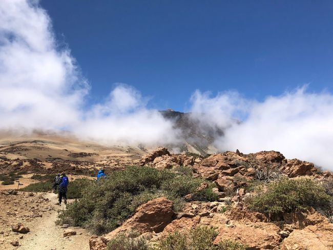 Hiking, Volcano Teide, Tenerife 🇪🇸 Nofilter Hiking Cloud - Sky Clouds Mount Teide Volcano Teide Teide National Park Mountain Tenerife SPAIN Sky Cloud - Sky Land Day Beauty In Nature Nature Scenics - Nature Landscape Tranquility Outdoors Plant Blue Mountain Geology Tranquil Scene